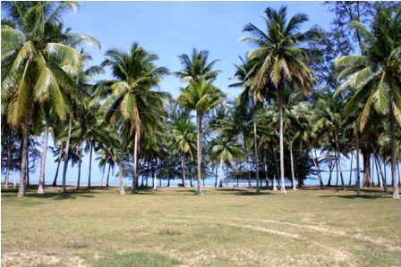 Bukit Keluang Kem Damai Beach Resort Besut Terengganu