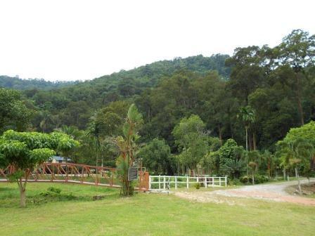 Sufes Campsite Tapah Perak