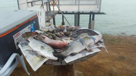 Tempat Percutian Perak memancing