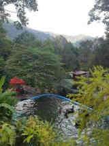 kuak highlang village Lenggong Perakkuak highland village Lenggong Perak