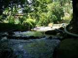 chalet tepi sungai di janda baik
