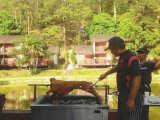 eco resort hulu langat